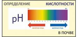 pH (кислотность)