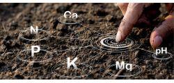 Анализ почвы - Стандарт